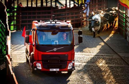 На фото: грузовик Volvo убегает от быков.